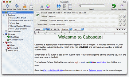 Caboodle main editor window